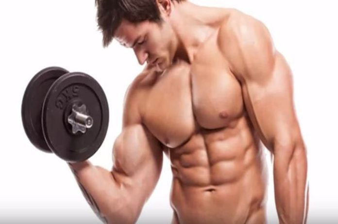 Ways to Increase the Size of Biceps
