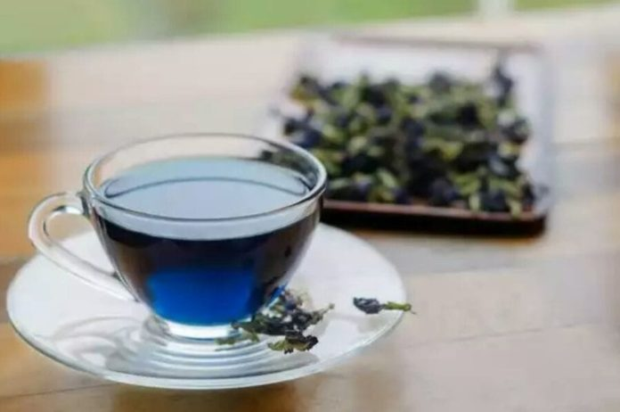 blue tea pine ke fayde