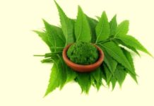 uses of neem