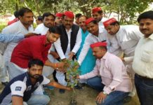 Planting by SP workers